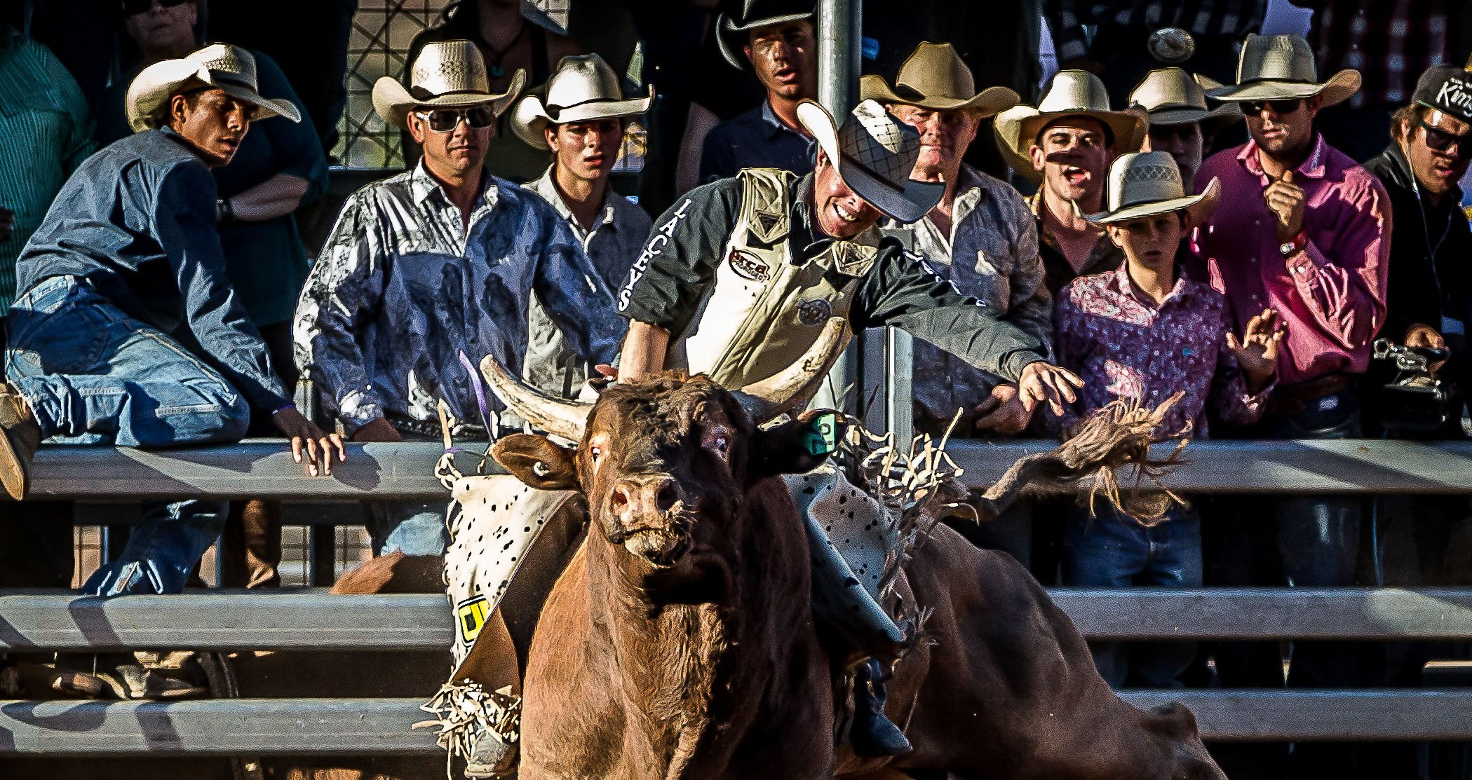 Bull ride at Mount Isa Mines Rodeo